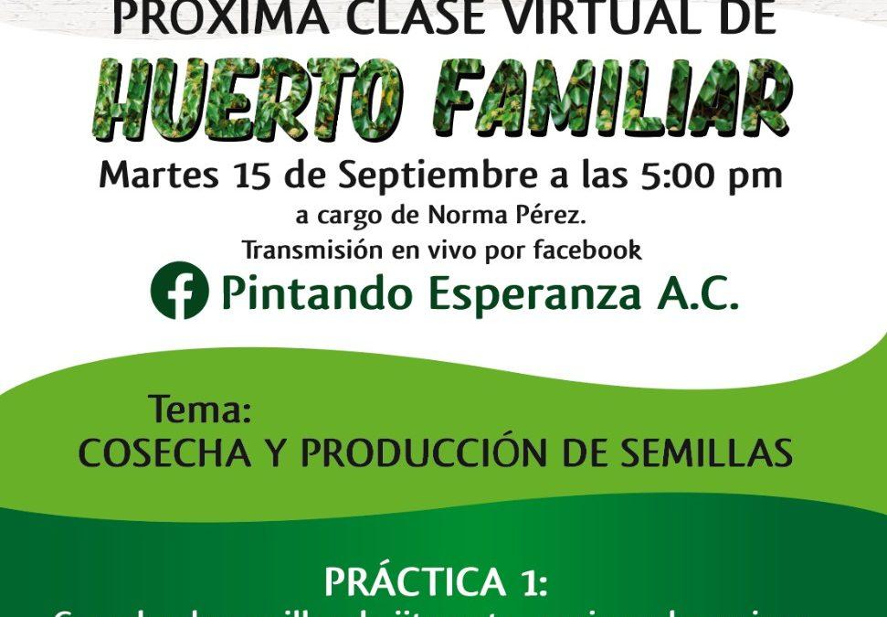 Próxima clase virtual de Huerto Familiar
